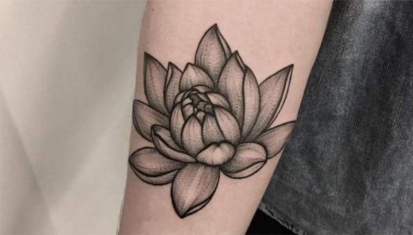 Ý nghĩa hình xăm hoa sen