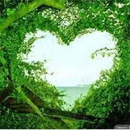 khách hàng xăm:Trái tim xanh